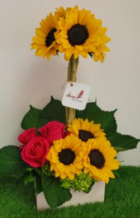 Danza de Girasoles Sunflower Arrangement in San Juan, PR   ELIKONIA FLOWERS