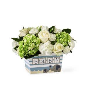 Darling Baby Boy  in Culpeper, VA | ENDLESS CREATIONS FLOWERS AND GIFTS