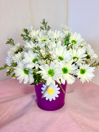 Darling Daisies Twine -Tied Pot