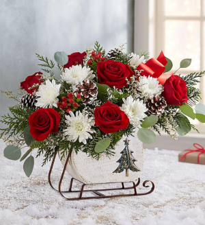 Dashing Through the Snow-Now $49.99 Holiday Special SALE!!! Was $59.99 in Sunrise, FL | FLORIST24HRS.COM
