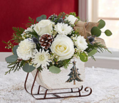 Dashing Through the Snow Sleigh™ White Arrangement