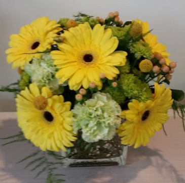Dasies Flower arrangement