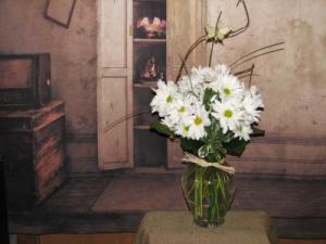 Daisy Delight  in Stevensville, MT | WildWind Floral Design Studio