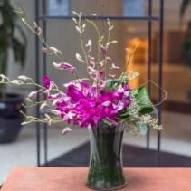 Dazzling Orchids Arrangement