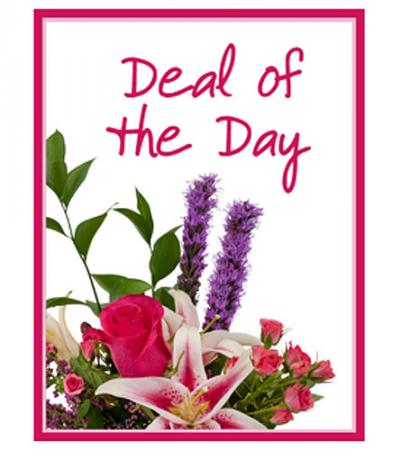 Deal of the Day Fresh Flower Arrangement