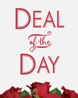 Deal of the Day Custom Arrangement