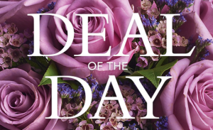 Deal of the Day  in Charlotte, NC | Plush Blooms of Charlotte