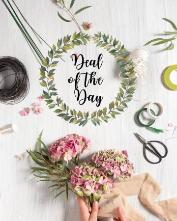 Deal of the Day Arrangement