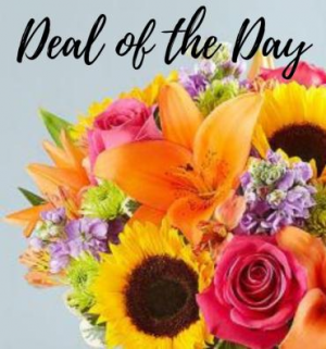 Deal Of The Day Arrangement in Croton On Hudson, NY | Cooke's Little Shoppe Of Flowers