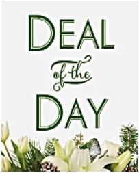 Deal of the Day Bouquet in Coral Springs, FL | DARBY'S FLORIST