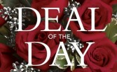 DEAL OF THE DAY ONLINE ONLY Designers Choice Arrangement