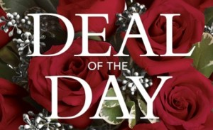 DEAL OF THE DAY ONLINE ONLY Designers Choice Arrangement in Cape Coral, FL | ENCHANTED FLORIST OF CAPE CORAL