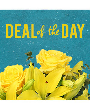 Deal of the Day Custom Arrangement in Morgantown, KY | FIVE SEASONS FLOWERS & GIFTS