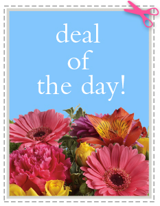 Deal of the Day Custom - Designer's Choice