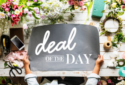 Deal of the Day Small - Medium Designer's Choice