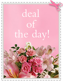 Deal of the Day Designers Choice Fresh and beautiful product of the day in San Dimas, CA | O'MALLEY'S FLOWERS OF SAN DIMAS