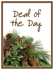 Deal of the Day - Winter Arrangement