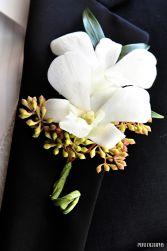 Debrobium Orchid  Boutonniere