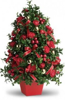 Deck the Halls Boxwood Tree  with or without lights