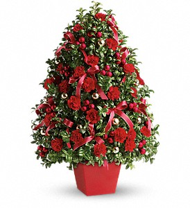 Deck The Halls  Decorated Boxwood Tree