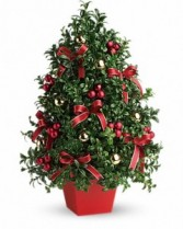 Deck the Halls Tree Boxwood Christmas Tree