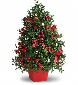 Deck The Halls Tree Holiday in Lauderhill, FL | A ROYAL BLOOM FLOWERS & GIFTS