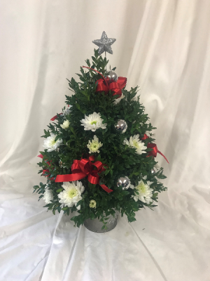 Decorated Boxwood tree Christmas in Medfield, MA | Lovell's Florist, Greenhouse & Nursery