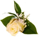 ROSE BOUTONNIERE CHOOSE YOUR COLOR