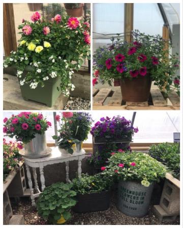 Decorative Flowering Planters!