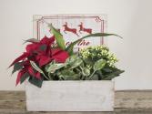 Deer Box Christmas Planter