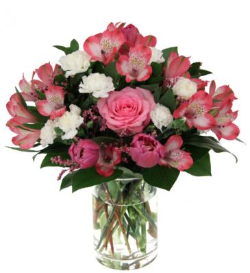 Delicate Lovely Bloomer