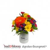 Delightful Daisies Bud & Bloom Signature Arrangement
