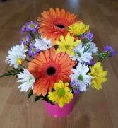 Delightful Daisies Fresh arrangement