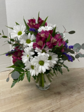 Delightful Daisies Plus Arrangement