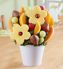 Delightful Daisy Treat  Fruit Bouquet