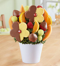 Delightful Daisy Treat with Chocolate Fruit Bouquet