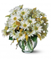 Delightful Smiles  Vase Arrangemnt