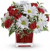 Delightfully Daisey vase arrangement