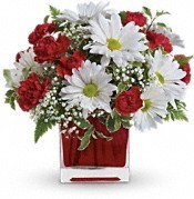 Delightfully Daisey vase arrangement