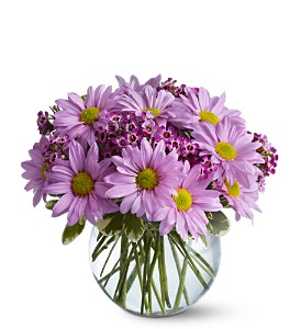 Delightfully Daisies - 433  Vase Arrangement