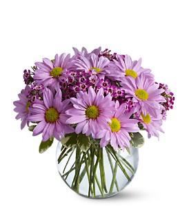 Delightfully Daisies - 433  Vase Arrangement