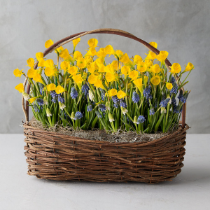 Delightfully Spring in a basket   in Oakville, ON | ANN'S FLOWER BOUTIQUE-Wedding & Event Florist