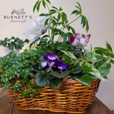 Deluxe Planter basket Planter