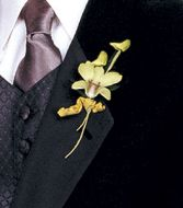 Dendro Orchid  Boutonniere (white, purple, blue also available)