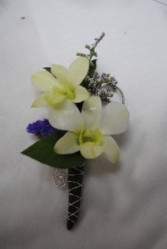 Dendrobium Orchid Bout TV Floral Exclusive