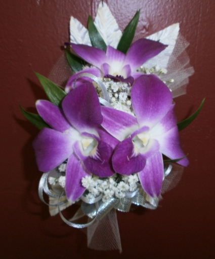 Dendrobium Orchid Corsage Wrist Corsage In East Meadow Ny