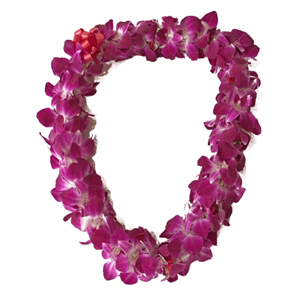 Dendrobium Orchid Lei **CALL TO PRE-ORDER** Quantities Limited in Lakewood, WA | Crane's Creations 2.0