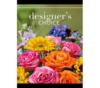 Designer Choice SPECIAL!! $15 Bonus