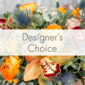 Designer Choice