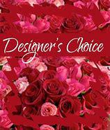 $50 $75 $100 Designer's Choice Special Valentine Floral Arrangement